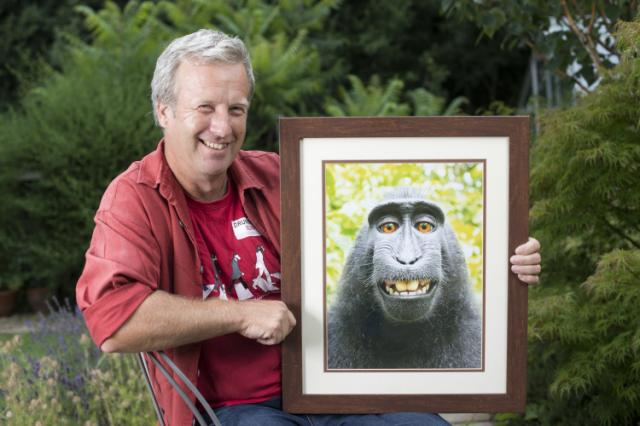 INTERESTING BITS: Lawsuit Settled Over Rights to Monkey's Selfie Photo